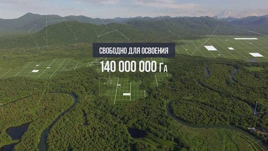 Каждый житель россии может бесплатно получить гектар на далеком Востоке